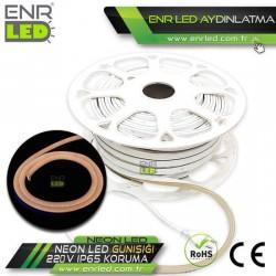 NEON HORTUM LED